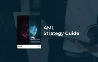AML Strategy Guide